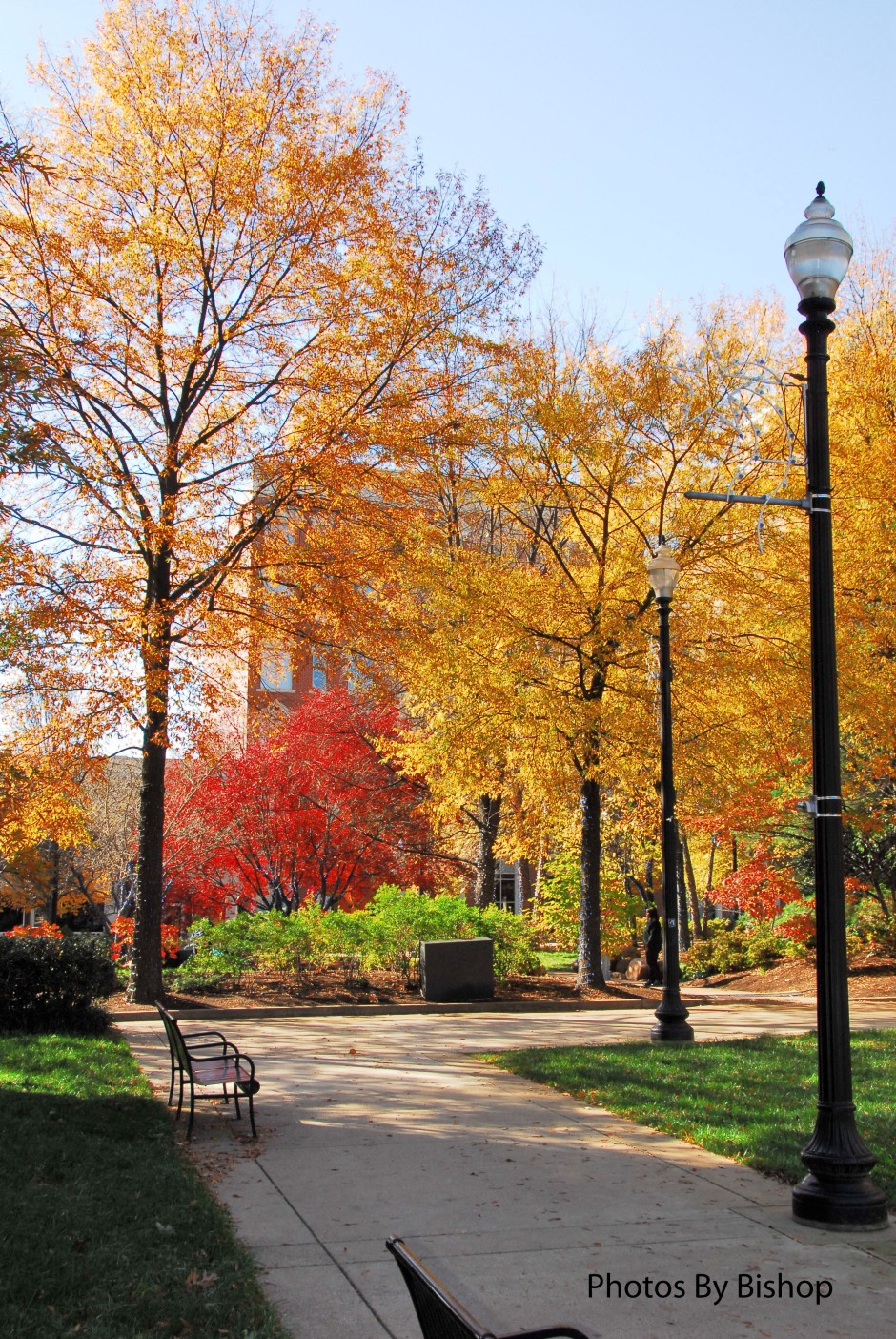 Downtown Knoxville, Tennessee Market Square Park.
